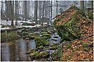 Reschbach im Nationalpark
