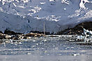 Segelschiff im Magdalenen-Fjord